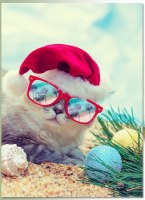 """Box of 14 8"""" x 6"""" Cat With Sunglasses Glitter Embellished Christmas Cards"""