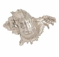 "4"" Faux Silver Gold Murex Shell"