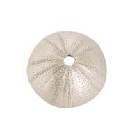 "3"" Round Faux Champagne Gold Sea Urchin"