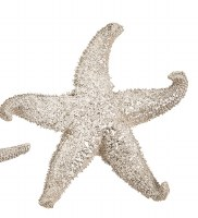 """4"""" Faux Champagne Gold Fat Arm Starfish"""