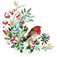 "5"" Square Holiday Bird Petti Rosso Beverage Napkins"