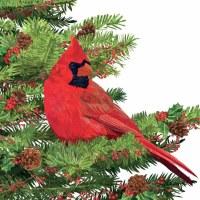 """5"""" Square Yuletide Red Cardinal Beverage Napkins"""