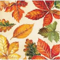 """5"""" Square Vibrant Fall Leaves Beverage Napkins"""