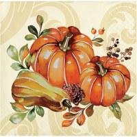"5"" Square Pumpkins & Gourd With Burgundy Band Beverage Napkins"
