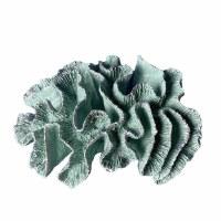 "10"" Faux Mint Polyresin Brain Coral"