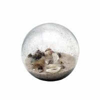 """4"""" Round Clear Glass Beach Orb With Sand and Shells"""