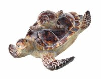 """9"""" Brown and Tan Polyresin Sea Turtle and Baby"""