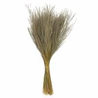 "3 oz Bunch of 14""-20"" Natural Snowdrop Grass"