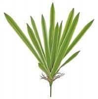 """21"""" Faux Green Cream Yucca Leaf Plant"""