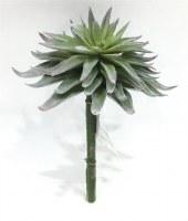 """7"""" Faux Frost Sage Sword Succulent"""