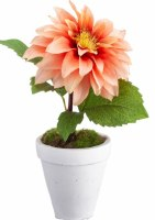 """10"""" Faux Coral Sunset Dahlia in White Clay Pot"""