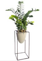 """66"""" Faux Green Zamioculcas in Green Cement Pot With Metal Stand"""