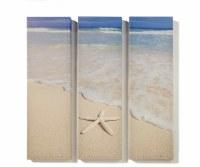 "Set of 3 24"" x 7"" Starfish Beach Canvas Wall Art"