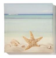 "12"" Square Starfish Beach Canvas Wall Art"