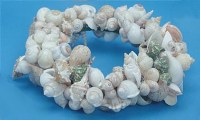 "11"" Natural Shell Wreath"