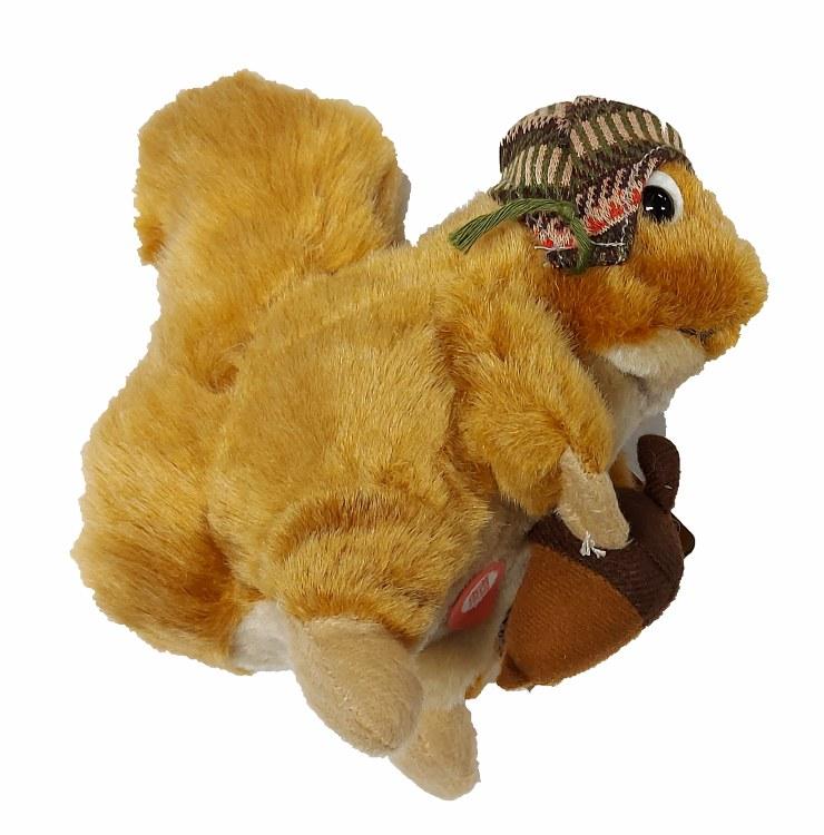 Écureuil Hiver