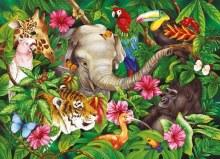 Casse-tête, 60 mcx - Amis des tropiques