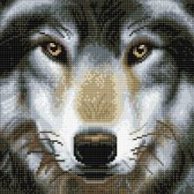 Crystal Art - Loup - Medium