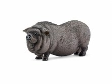 Cochon du Vietnam
