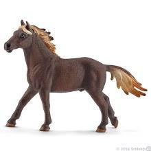 Étalon Mustang