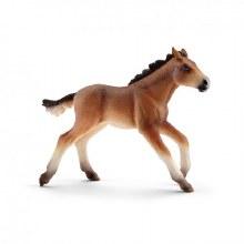 Poulain Mustang