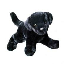 Brewster - Labrador noir