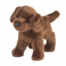 C.C. Bean - Labrador chocolat
