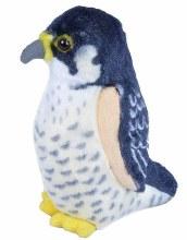 Faucon pelerin