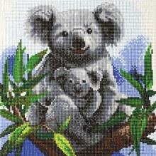 Crystal Art - Koalas - Medium