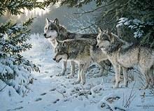 Casse-tête 1000 mcx - Wolf trail