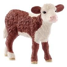 Veau Hereford Calf