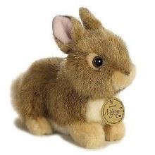 Bébé lapin beige