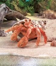Crabe, Bernard l'Hermite