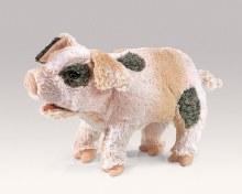 Cochon qui grogne