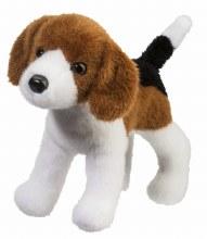 Bob - Beagle