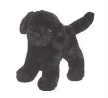 Abraham - Labrador noir