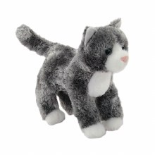 Scatter - Chat gris