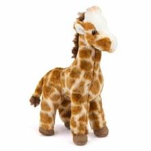 Ginger - Girafe