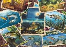 Casse-tête 1000 mcx - Fish Pics