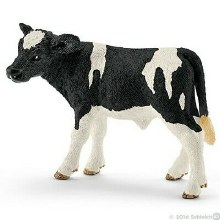Veau Holstein