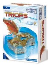 Triops (Ang.)