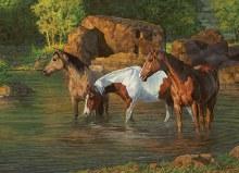 Casse-tête 500 mcx - Horse pond