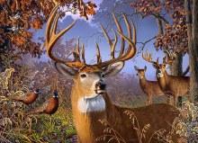 Casse-tête 500 mcx - Deer and Pheasant