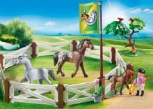 Enclos avec chevaux