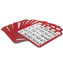 Carte de bingo (100)