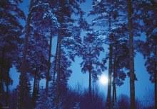 Casse-tête, 500 mcx - Pleine Lune