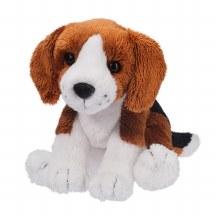 Sniff - Beagle