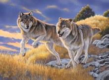 Casse-tête 500 mcx - Les Loups