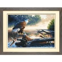 Peinture à Numéros - Aigle Chasseur