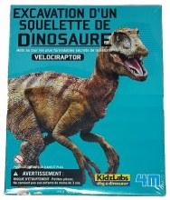 Excavation d'un squelette de Vélociraptor
